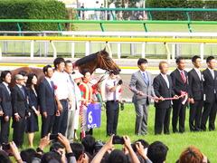 20150607 東京11R 安田記念(G1) モーリス 22