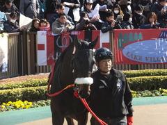 20140223 東京9R ショウナンラグーン 02