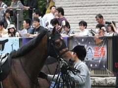 20140517東京9R オウケンブラック 09