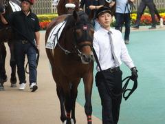 20141026 東京8R オウケンブラック 03