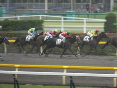 20140628 東京2R トマトリコピン 12