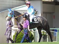 20150425 京都11R 錦S  アドマイヤビジン 13