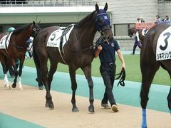 20180617 東京3R 3歳未勝利 ダノンシャレード 06