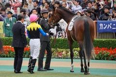 20191124 東京5R 2歳メイクデビュー ソードライン 19