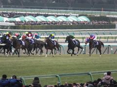 20141228 中山10R 有馬記念 サトノノブレス 11