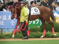 20180929 中山5R 2歳牝馬メイクデビュー オトナノジジョウ 13