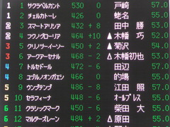 20160918 中山12R (500) アークアーセナル 01
