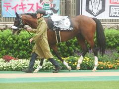 20190622 東京10R 八ヶ岳特別(2勝) ロジスカーレット 10