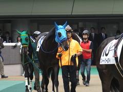 20151017 東京4R 2歳メイクデビュー モーゼス 02