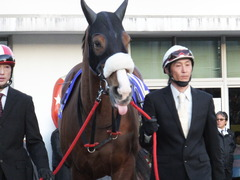 20151229 大井10R 東京大賞典 (G1) ユーロビート 16