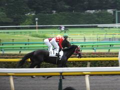 20140628 東京2R トマトリコピン 11