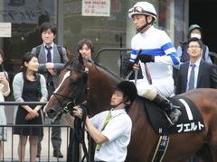 20160528 東京9R 富嶽賞(1000) プエルト 14