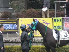 20160130 東京3R 3歳未勝利 アイルーロス 11