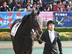 20161027 東京3R 2歳未勝利 パリンジェネシス 05