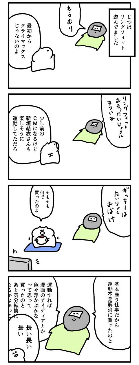 リングフィット1