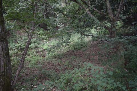 小田野城 堀跡