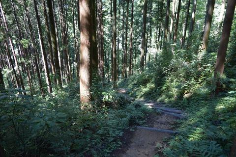 天竺山3 ブログ用