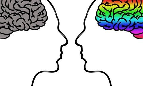 向かい合う人の脳が見える頭