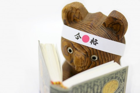 木彫りの熊が読書する