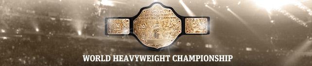 WWEをもっと楽しむブログ  WWEのシングルタイトル 最多獲得回数は??(世界王座編)コメント