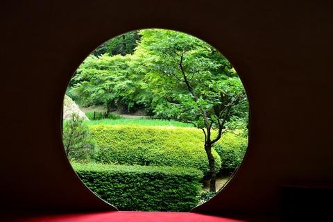 明月院の裏庭園