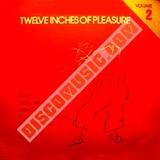 Twelve Inches Of Pleasure2