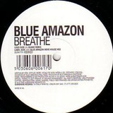 blueamazon