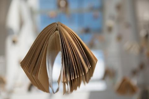 book-436507_960_720