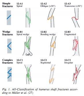 tibial shaft fracture rehabilitation protocol pdf
