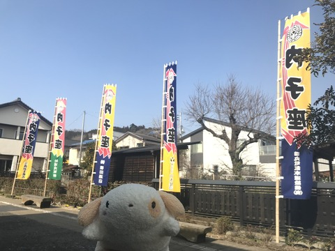 IMG_3508 愛媛県