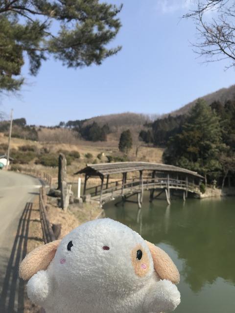 IMG_3495 愛媛県