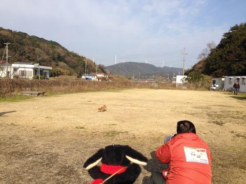 飛行犬撮影所