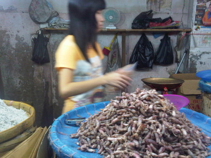 Medan Kota-20120522-01601