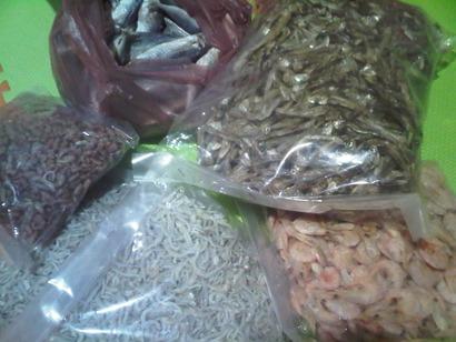 Tanjung Priok-20120522-01614