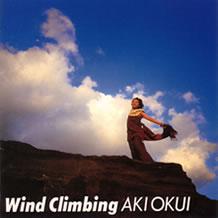 WindClimbing