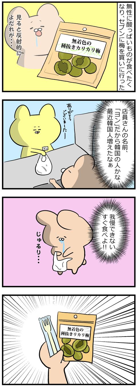 カリカリ梅の新しい食べ方2-1