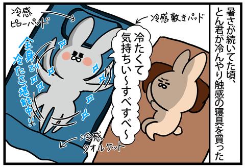 ☆冷感寝具を買ってみました!!2-1