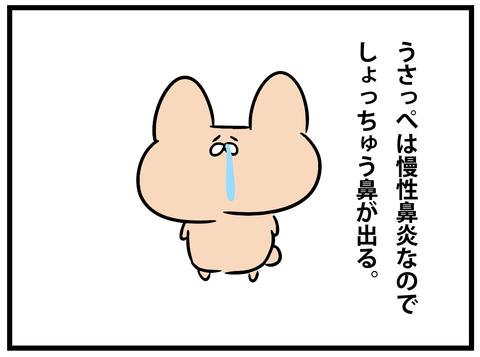 ☆usappetoティッシュ2-1