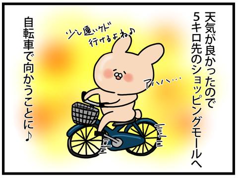 ☆自転車で5キロ漕いで行ったんだけど2-1