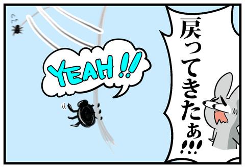 とん君とクモの戦い5-4