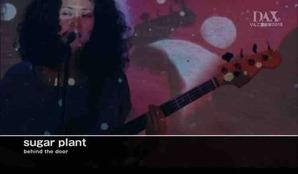 DAX - sugar plant