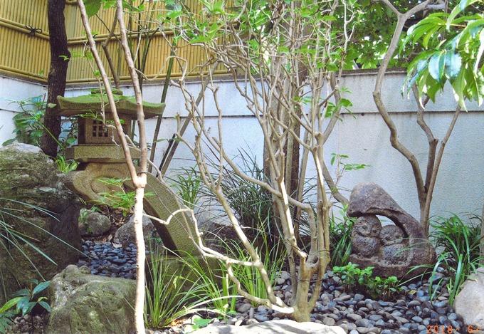 お庭に石のふくろう設置