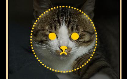 目と鼻の位置