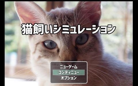 猫飼いシミュレーション0