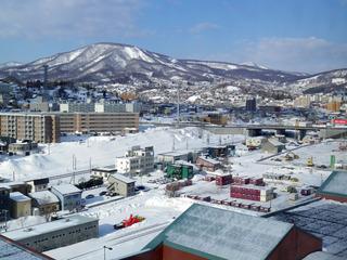北海道サクラマス 1-2