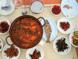 「韓国釣りの旅」第8回-1