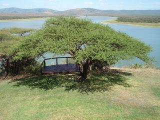 南アフリカ04-3