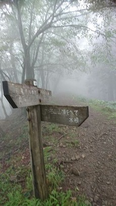 15鷹ノ巣山から下山します