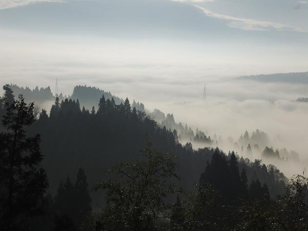 12/05の雲海