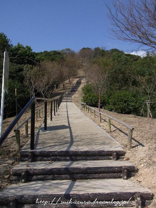 山頂広場への路